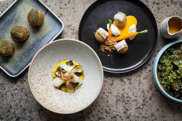 Roots, York: Restaurant Review