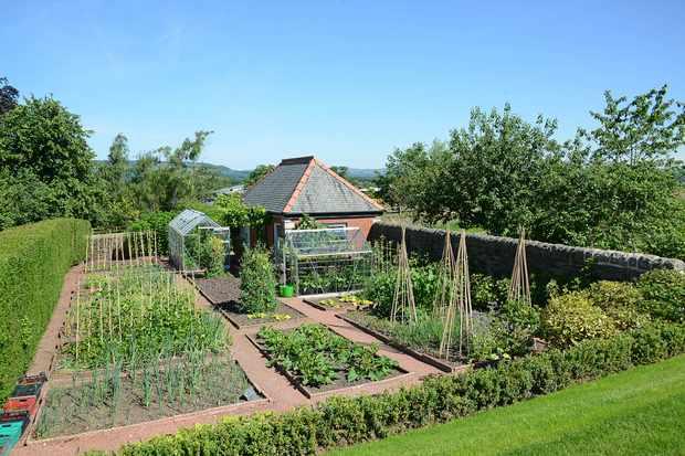 Northcote working gardens