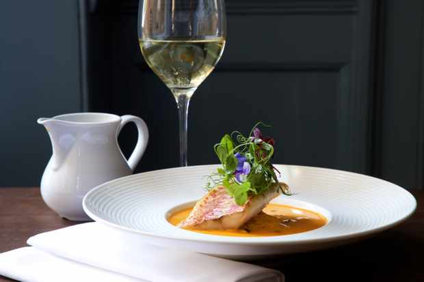 Dish and glass of wine at Eight Bath