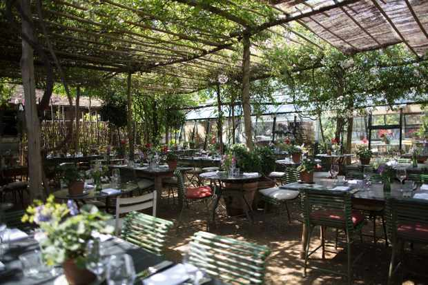 A glasshouse filled with tables, chairs and lush greenery