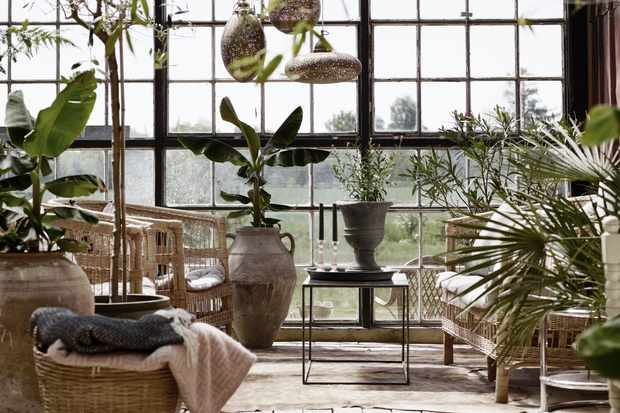 A greenhouse style building with striking floor to ceiling glass windows. The building is filled with plants and greenery