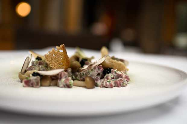 The photo is taken from a low side angle, with beef tartare mixed with mushroom slithers and thin crouthons
