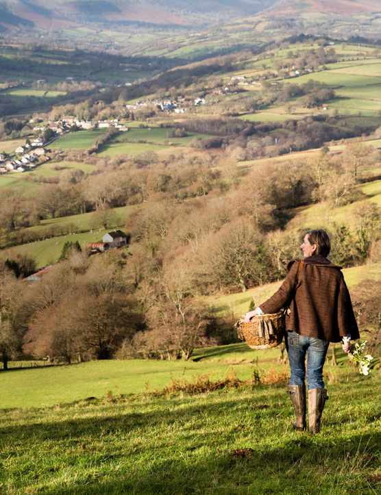 Green rolling fields in the Herefordshire countryside with a forager named Liz Knight walking through the fields holding a basket