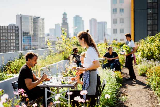 A lush green rooftop garden with people sat outside eating has views over Rotterdam