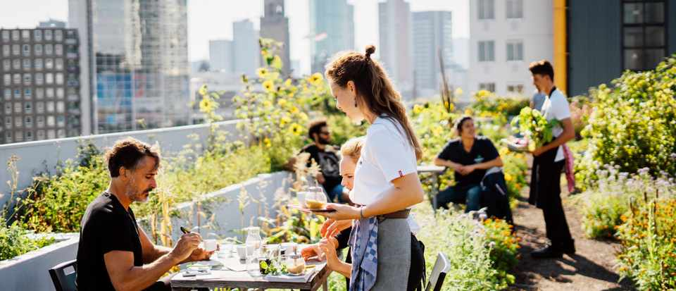 A lush green garden with people sat outside eating has views over Rotterdam