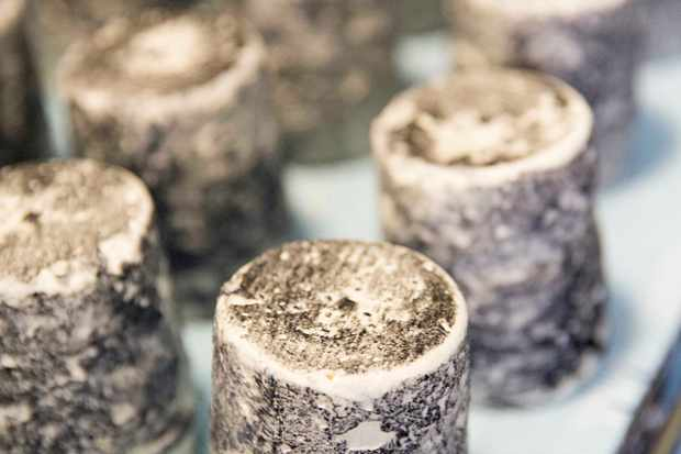 Dorstone Goat's Cheese from Neals Yard Creamery in Herefordshire