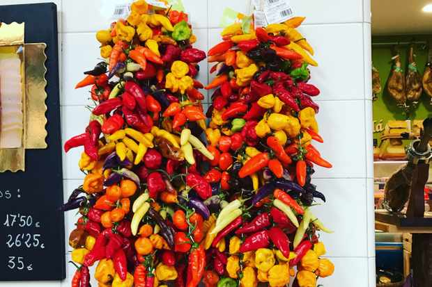 A white tiled wall has two lots of colourful chilli peppers hanging from it