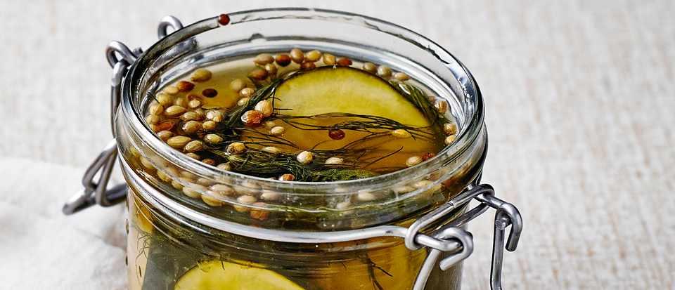 Quick Dill Pickle Recipe