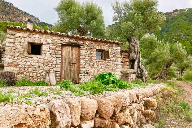 Son Moragues Mallorca lunch hut