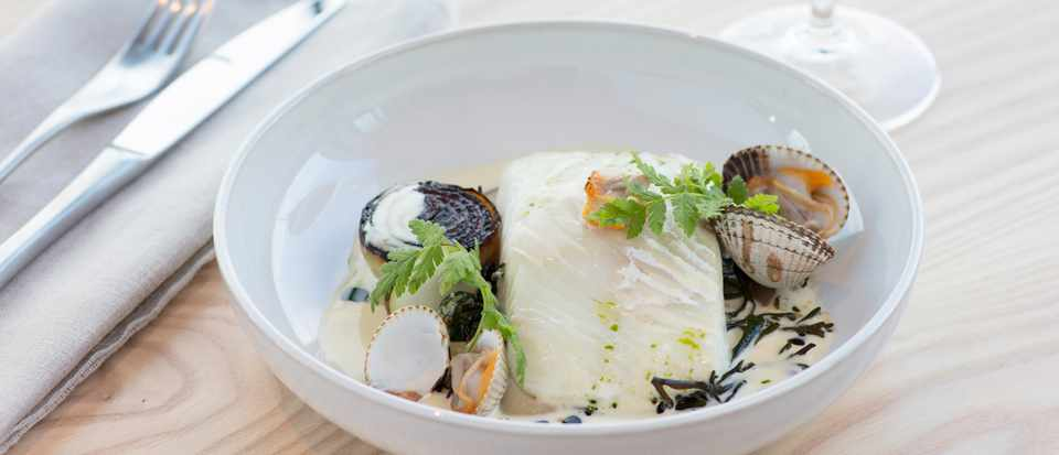 A shallow white bowl is filled with a large piece of Gigha halibut, with cockles, mussels, celeriac and kohlrabi is the bowl, too