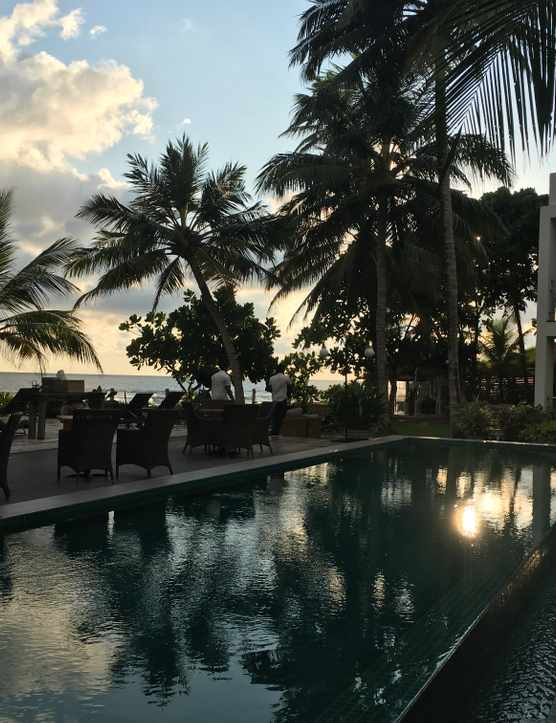 The swimming pool is surrounded by palm trees and has reflections of the trees in the water. It is sunset and there are a few clouds in the sky