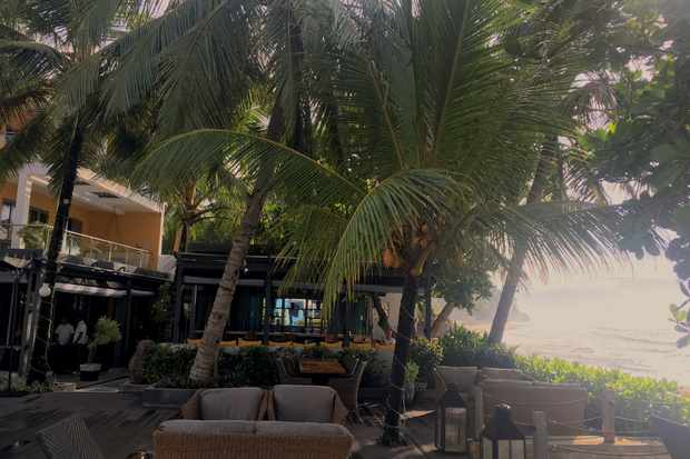 There are sofas and chairs shaded by palm trees outside the hotel's waterside bar and restaurant