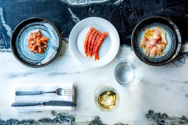 Three plates with raw fish and seafood