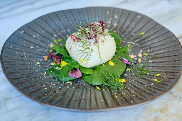 A dark grey round plate is topped with a ball of smoked bufala burrata. It is sat on a bed of greenery and is topped with radicchio and pine nuts