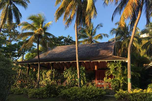 Tucked amongst palm trees and lush greenery is a large wooden chalet. It has a thatched roof and set against a clear blue sky