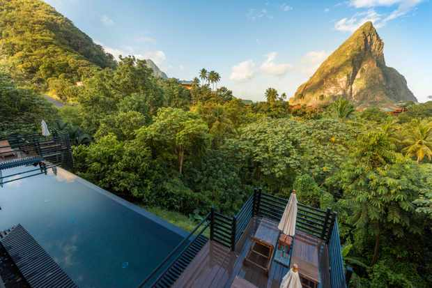 An infinity pool is set against a striking background of green rainforest with a mountain in the background