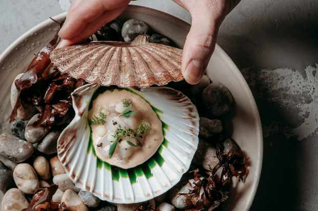 A grey bowl is filled with pebbles. On top of the pebbles sits a scallop shell within that is a fleshy scallop. There is a green sauce and herbs on top