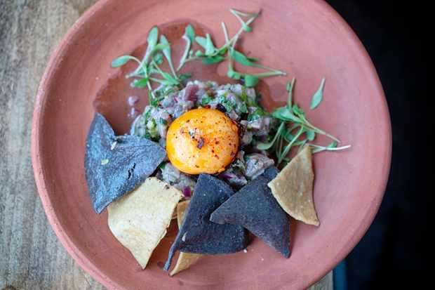 A circular terracotta plate is topped with small chunks of beef crudo. There is a cured orange egg yolk and top and brown and black tortilla chips on the side