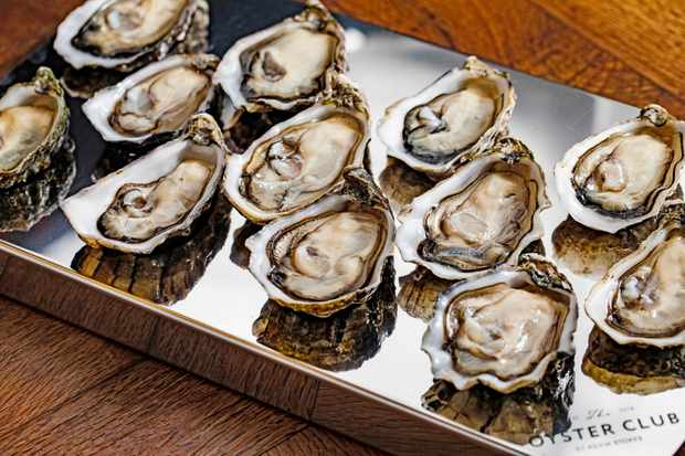 A silver tray topped with oysters