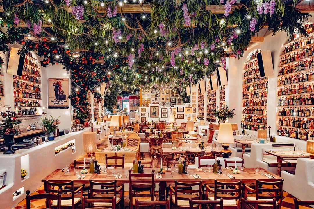 Interiors of Circolo Popolare Fitzrovia wooden tables in bottled-lined walls with foliage hanging from the ceiling