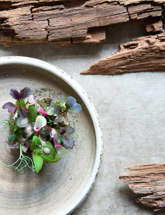 A homemade grey bowl is filled with edible flowers and greenery. Around the way is tree bark for decoration