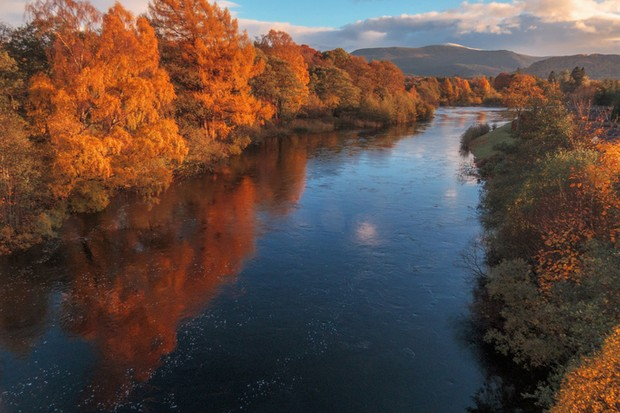 Autumn colours in the trees on the river Spey in Cairngorms National Park