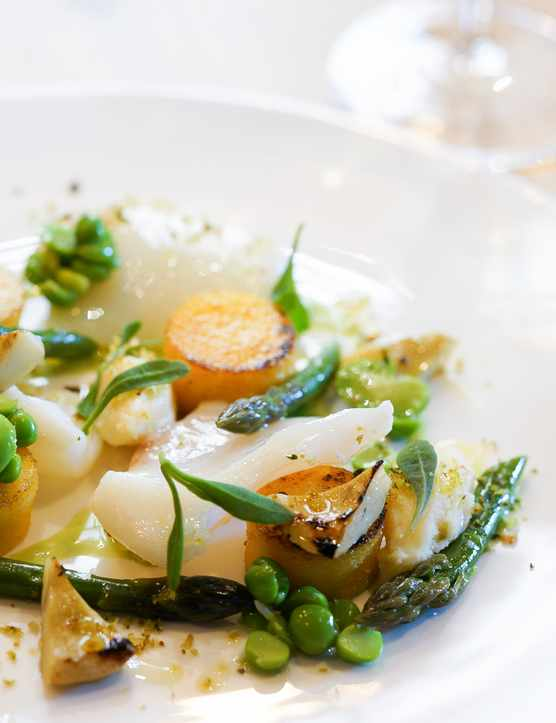 A white plate is topped with small fried potatoes, broad beans, asparagus and white fish