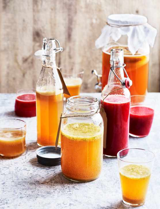 Kombucha Tea Recipes