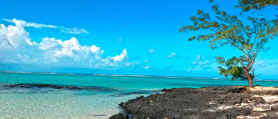 A rocky beach with bright blue sky and clear blue sea in Mauritius