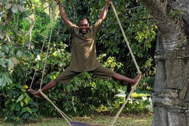 A man is stood on a swing hanging from a tree