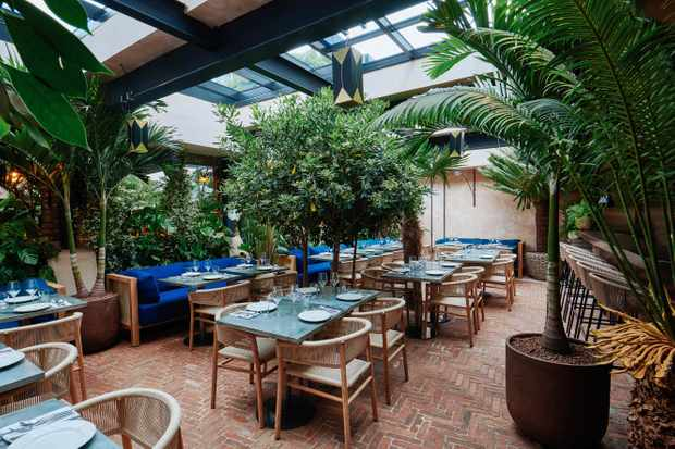 A greenhouse-style dining room has exposed brick floors, palm trees and hessian chairs
