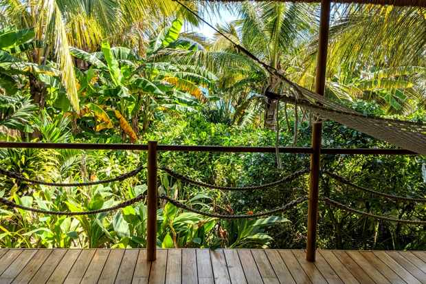 A wooden terrace is surrounded by tropical trees and greenery