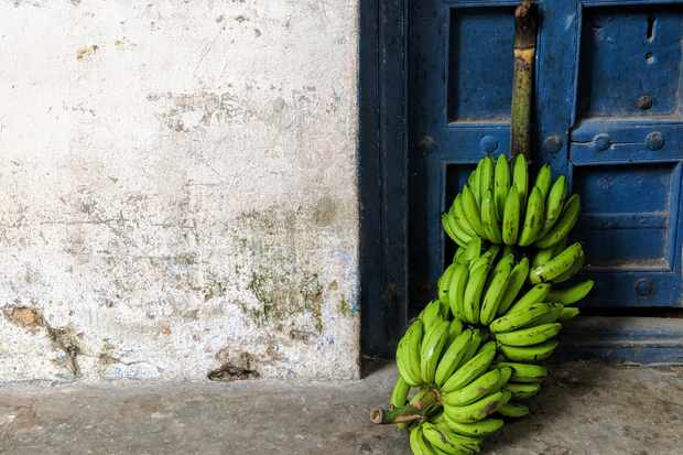 A white stone wall with a blue door and green bananas outside the door