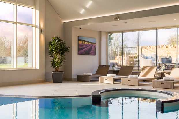 An indoor pool is in a circle shape and there are lounges set next to the pool. In one corner of the room is a tree