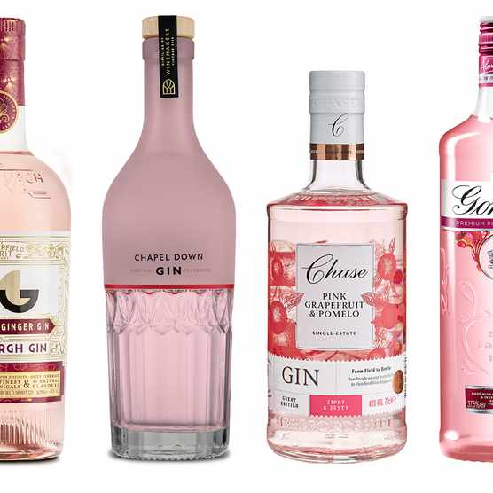 Four bottles of pink gin lined up in a row