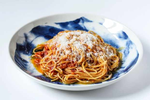 A blue and white bowl filled with spaghetti, a red tomato sauce and topped with grated white cheese
