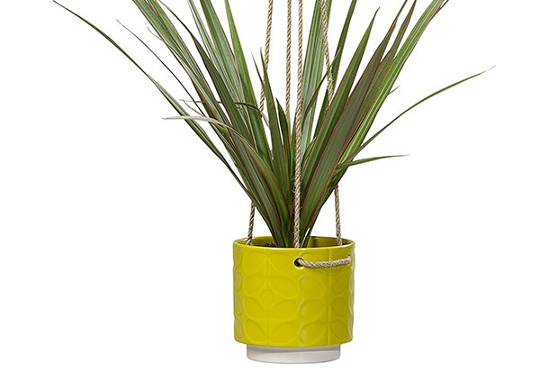 A small yellow plant pot with a green plant in it