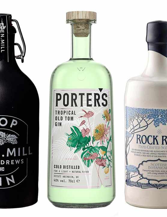 Best Scottish Gin Including Edinburgh Gin For Gin Gifts