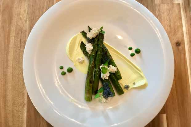 A white circular plate topped with green asparagus spears and a whitish yellow sauce