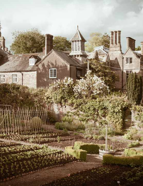 A large old building with kitchen gardens at the front