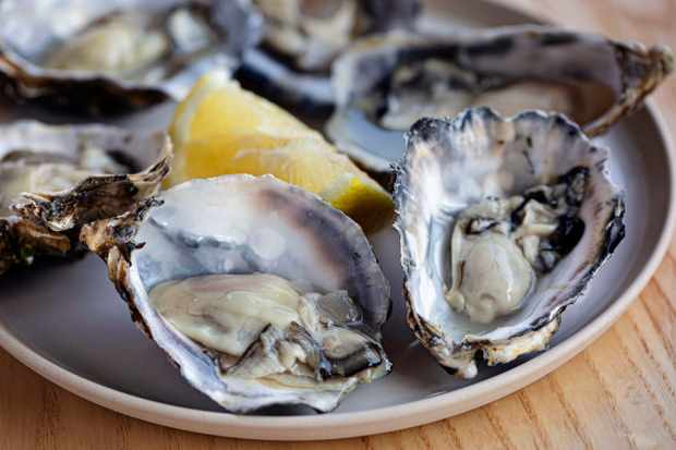 A plate topped with open oysters and a wedge of lemon