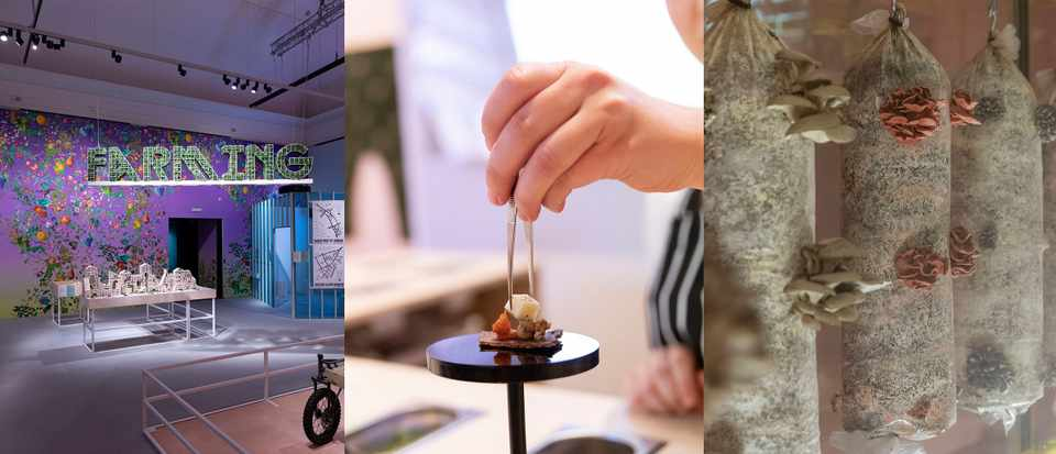 Three images from a food exhibition