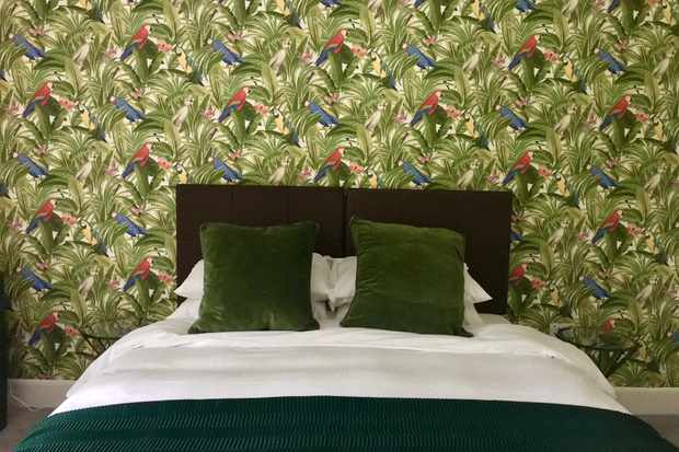 A bedroom with green tropical wallpaper and a double bed with green headboard