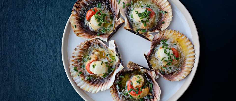 A white plate topped with scallops in their shells