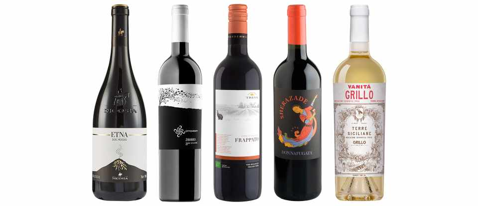 Sicilian wine: everything you need to know