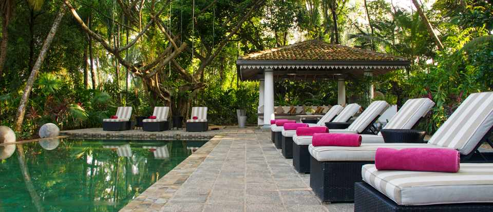 A tranquil swimming pool surrounded by greenery with loungers by the side