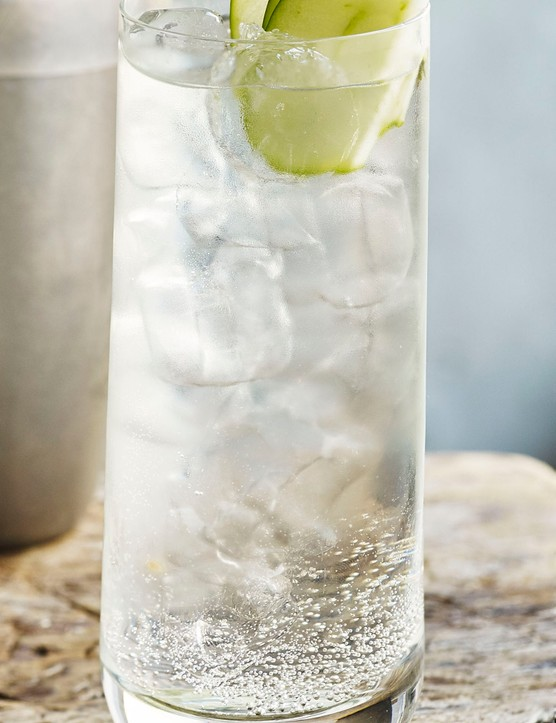 Gin and Tonic Recipe with Sake