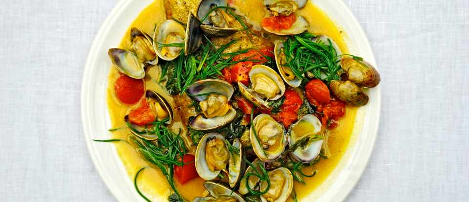 A white plate topped with clams, yellow sauce and green samphire