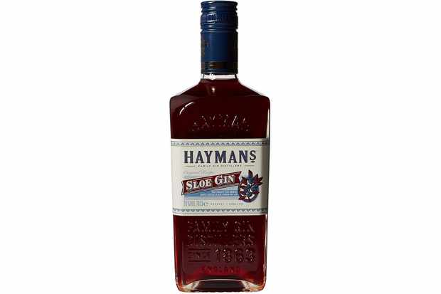 Haymans Sloe Gin Bottle