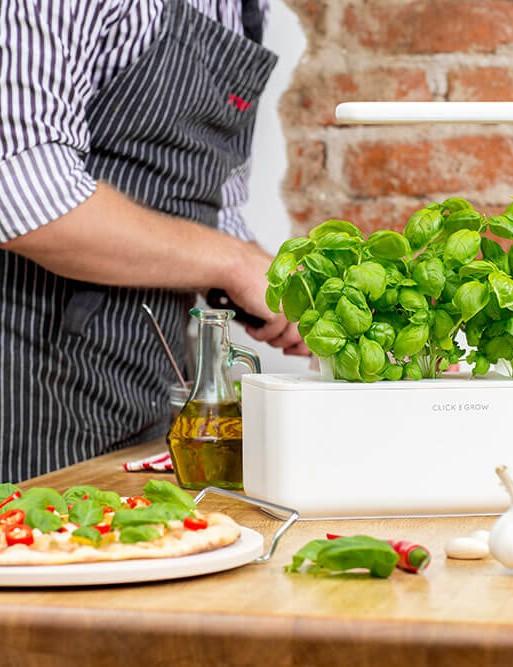 The Smart Garden 3 basil pizza